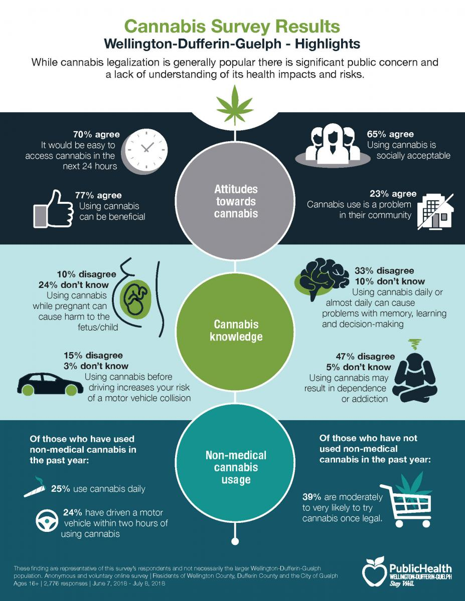 Infographic of Cannabis Survey Results