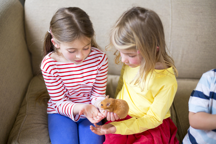 Two girls holding a hamster together