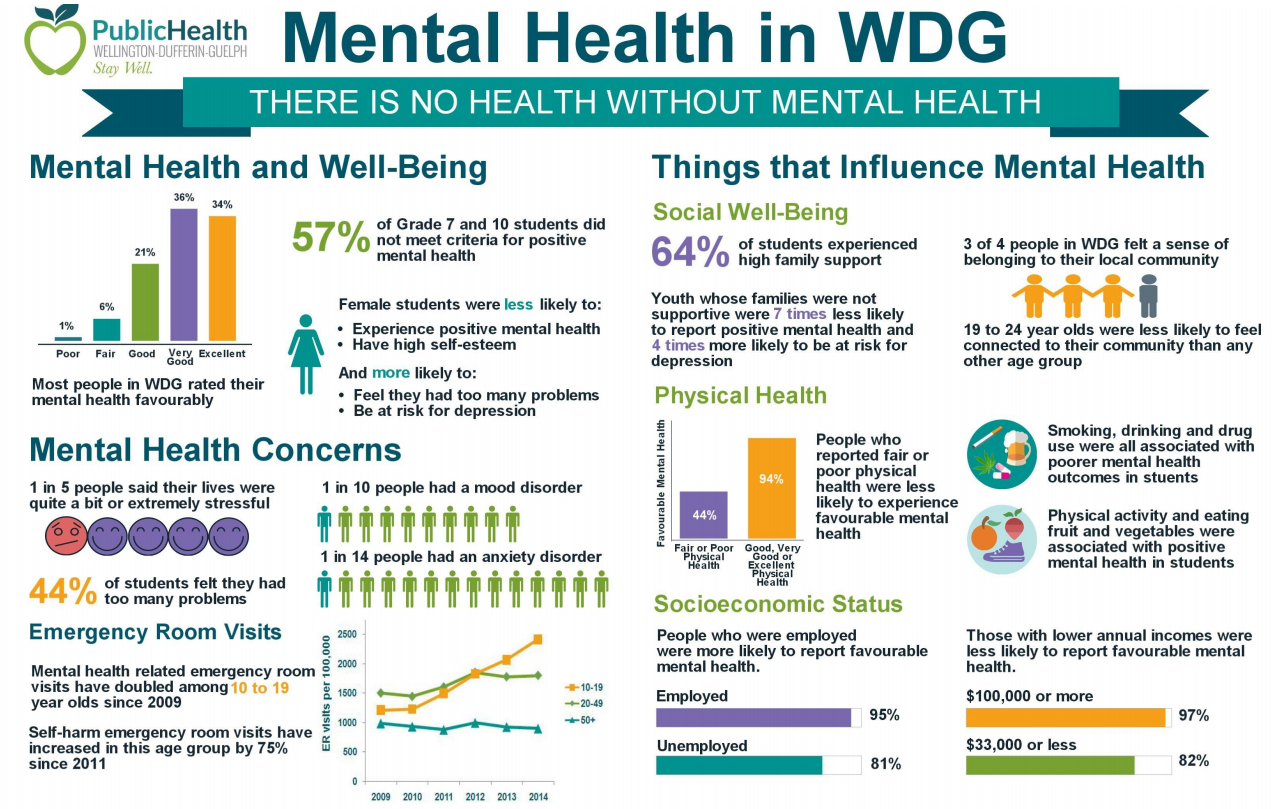 Mental Health Status Report Infographic