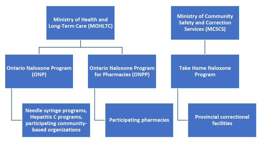 Flowchart that the programs that provide publicly-funded naloxone kits in Ontario. The Ministry of Health and Long-Term Care (MOHLTC) provide kits to Ontario Naloxone Program, which helps other programs. MOHLTC also funds the Ontario Naloxone Program for Pharmacies, which helps participating pharmacies. The Ministry of Community Safety and Correction Services helps the Take Home Naloxone Program, which helps provincial correctional facilities.