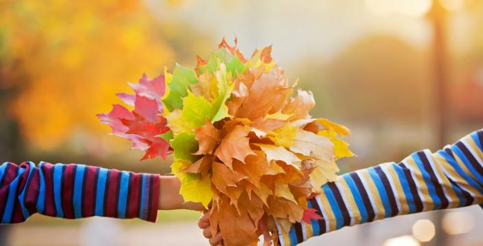 A bouquet of crunchy fall leaves